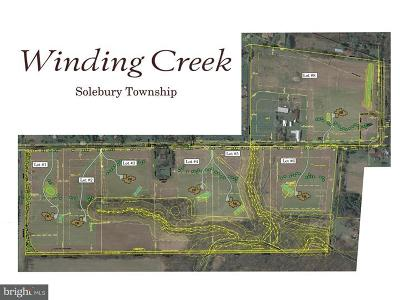 Solebury Single Family Home For Sale: 6095 Stovers Mill Road #LOT #2