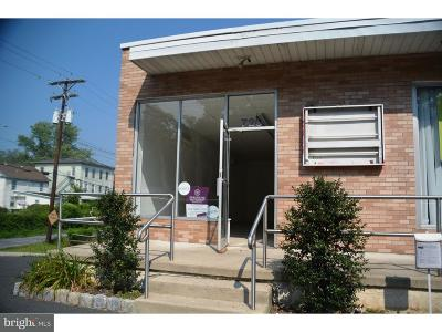 Bucks County Commercial For Sale: 720 Easton Road