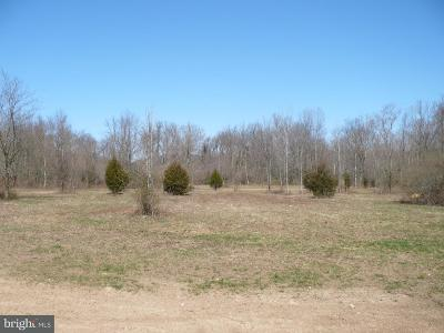 Bucks County Residential Lots & Land For Sale: Easton Road