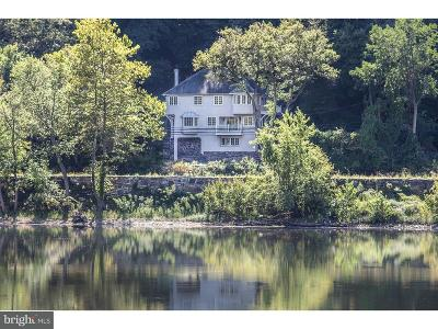 New Hope Single Family Home For Sale: 4386 River Road