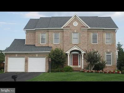 Chantilly Single Family Home For Sale: 4809 Autumn Glory Way