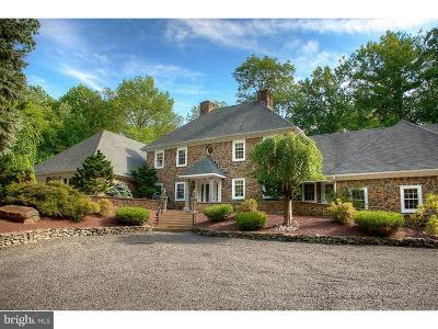 Bucks County Single Family Home For Sale: 402 Geigel Hill Road