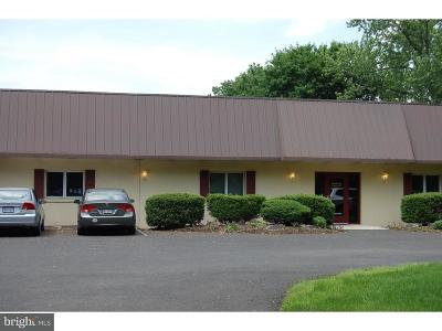 Bucks County Commercial For Sale: 39 Iron Hill Road #6