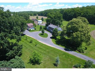Solebury Single Family Home For Sale: 6302 Greenhill Road