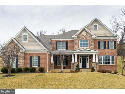 Chester Springs Single Family Home For Sale: 3990 Powell Road