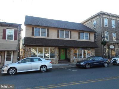 Bucks County Commercial For Sale: 11 E Afton Avenue
