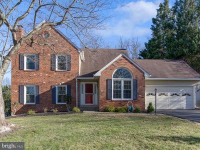Gaithersburg Single Family Home For Sale: 16009 Orchard Grove Road