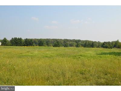 Bucks County Residential Lots & Land For Sale: 5942 Stump Road #LOT #3