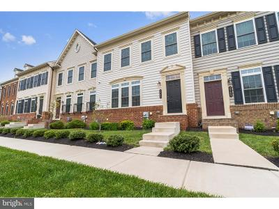 Bucks County Townhouse For Sale: 3765 William Daves Road