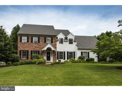 Doylestown Single Family Home For Sale: 4160 Hilltop Circle