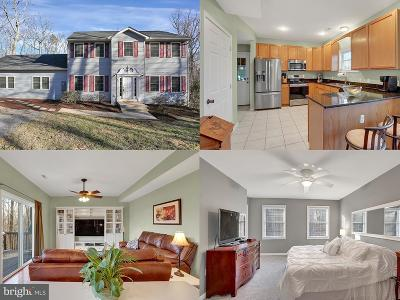 Frederick County Single Family Home Active Under Contract: 422 Raccoon Drive