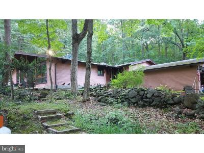 Bucks County Single Family Home For Sale: 142 Woodland Drive