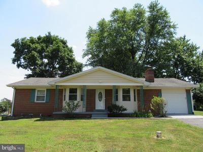 Warrenton Single Family Home For Sale: 4223 Broad Run Church Road