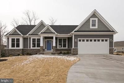 Frederick County Single Family Home For Sale: 216 Summerfield Drive