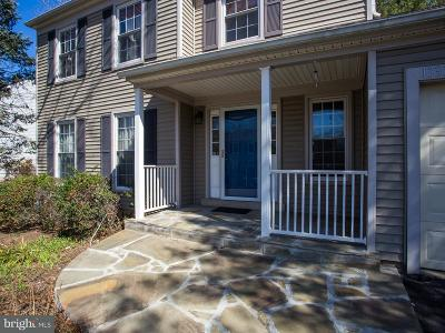 Herndon Single Family Home For Sale: 13337 Point Rider Lane