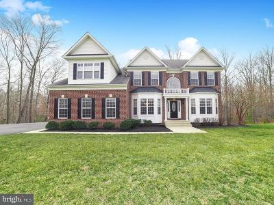 Mechanicsville Single Family Home For Sale: 27883 Ben Oaks Drive