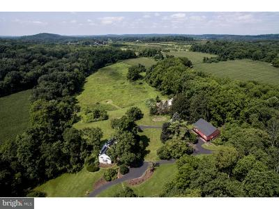 New Hope Single Family Home For Sale: 6117 Lower Mountain Road
