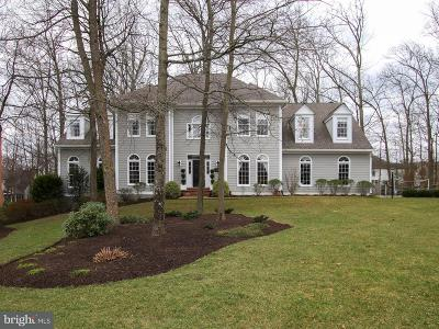 Reston Single Family Home For Sale: 11405 Towering Oak Way
