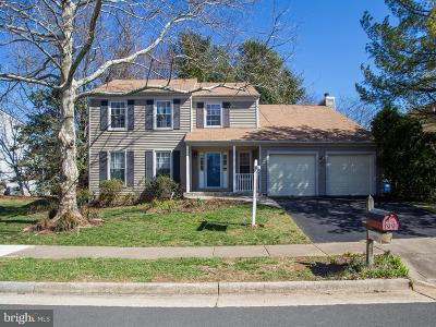 Reston, Herndon Single Family Home For Sale: 13337 Point Rider Lane