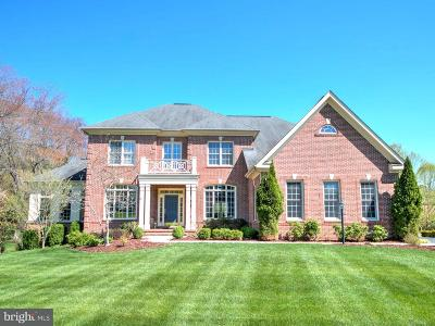Reston, Herndon Single Family Home For Sale: 1125 Clinch Road