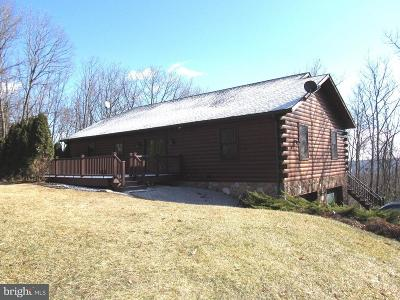 Biglerville Single Family Home For Sale: 45 Loop Road
