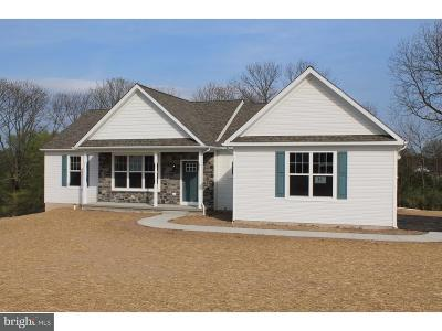 Bucks County Single Family Home For Sale: Mine Spring Road