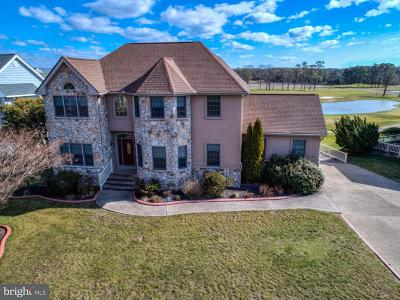 Dagsboro Single Family Home For Sale: 29373 Turnberry Drive