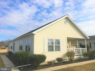 Frederica Single Family Home For Sale: 230 Barefoot Lane