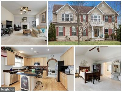 Falling Waters Single Family Home For Sale: 323 Triumphant Way