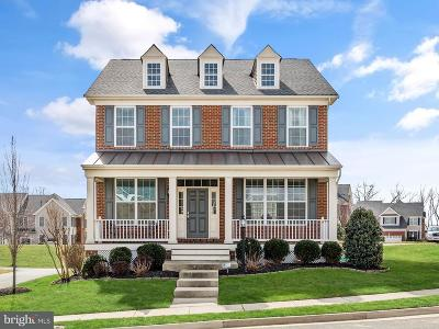 Ashburn Single Family Home For Sale: 23040 Yellow Star Terrace