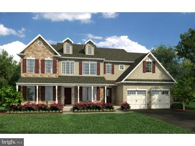 Douglassville Single Family Home For Sale: Plan 9 Green Meadow Drive