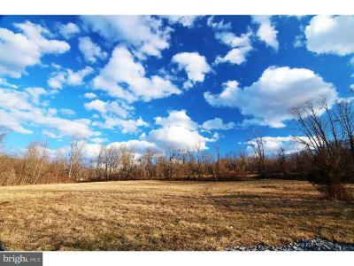 Residential Lots & Land For Sale: Lot 3 Haycreek Road