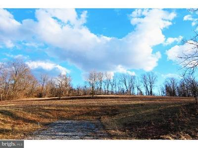 Residential Lots & Land For Sale: Lot 2 Haycreek Road