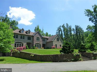 Mohnton PA Single Family Home For Sale: $1,950,000