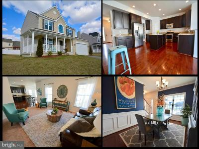Centreville Single Family Home For Sale: 117 Long Creek Way