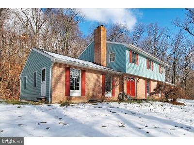 Temple PA Single Family Home Under Contract: $275,000
