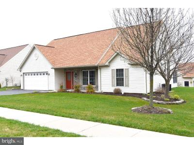 Sinking Spring Single Family Home For Sale: 103 S Cacoosing Drive