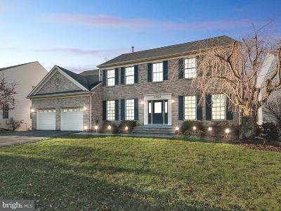 Germantown Single Family Home For Sale: 21523 Manor View Circle