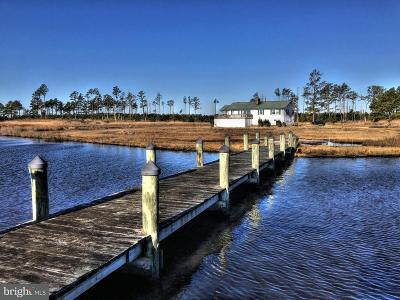 Princess Anne Single Family Home For Sale: 10139 Crab Island Road