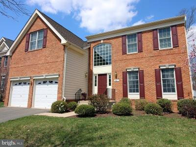 Ashburn Single Family Home For Sale: 20317 Medalist Drive S