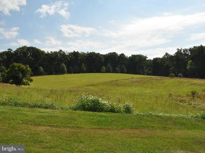 Leesburg Residential Lots & Land For Sale: 40221 Beacon Hill Drive