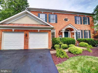 Leesburg Single Family Home For Sale: 18413 Mill Run Court