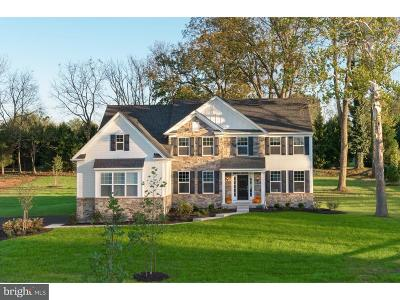 Collegeville Single Family Home For Sale: 3805 Lucia Lane #LOT 4