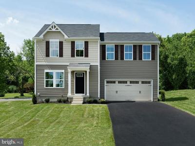 Fredericksburg Single Family Home For Sale: Taylors Hill Way