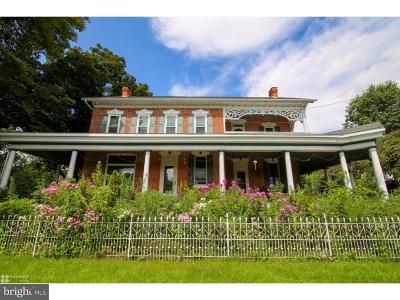 Single Family Home For Sale: 33 Hawk Mountain Road