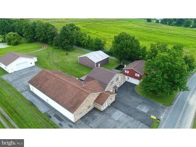 Single Family Home For Sale: 1009 Schubert Road