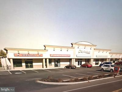 Temple PA Commercial Lease For Lease: $350,000