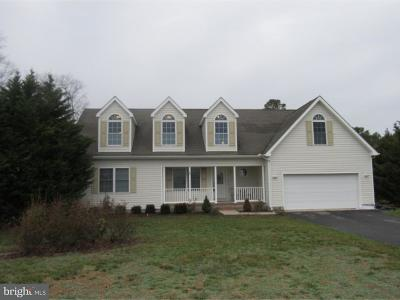 Bridgeville Single Family Home For Sale: 16858 Oak Road