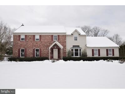 Doylestown Single Family Home For Sale: 101 Ridgeview Lane