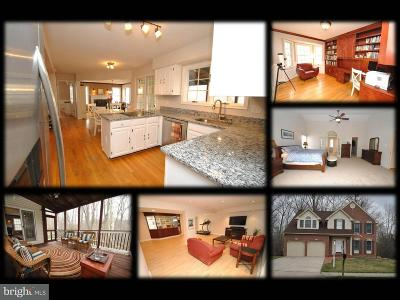 Baltimore Single Family Home For Sale: 9549 Hallhurst Road